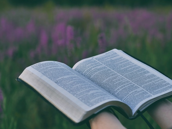Open Bible and Heather